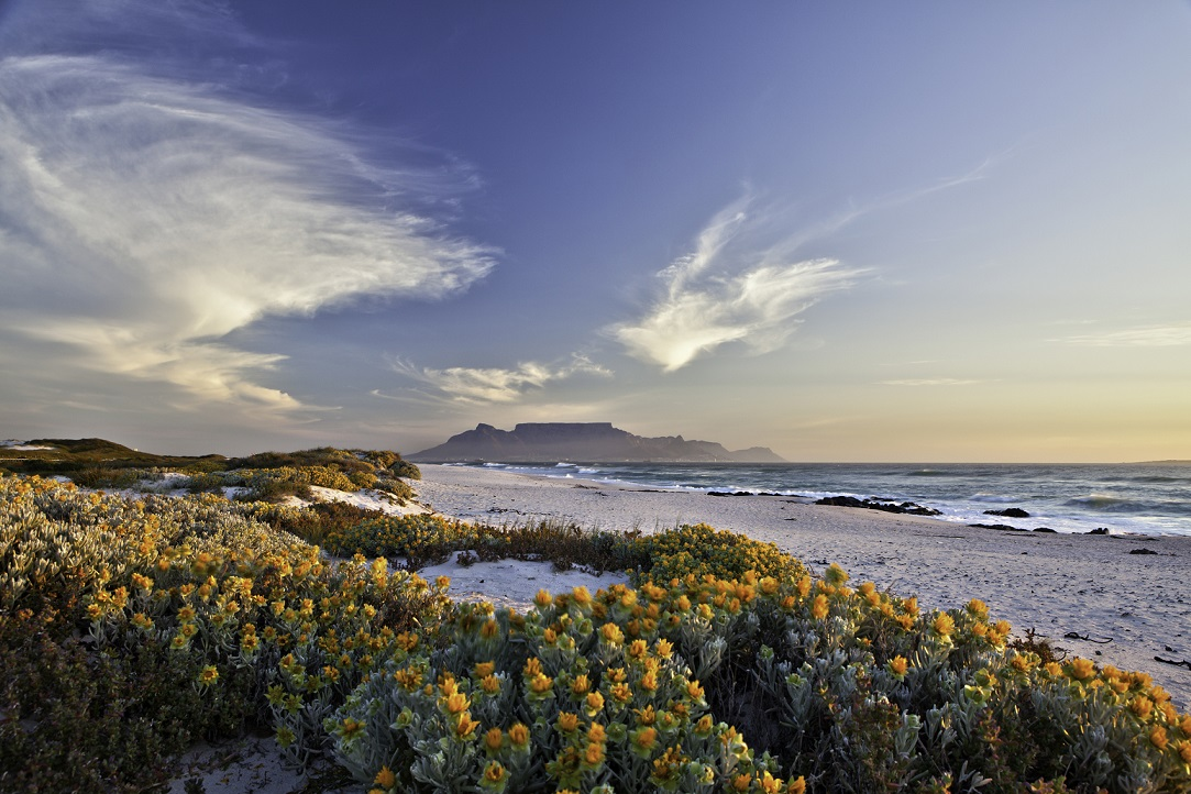 andmark travel destination in south africa